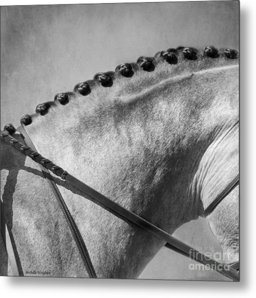 Shades Of Grey Fine Art Horse Photography Metal Print