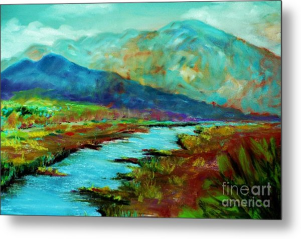 Shadow Brook Metal Print