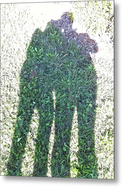 Shadow In The Meadow Metal Print