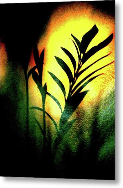 Shadow Metal Print
