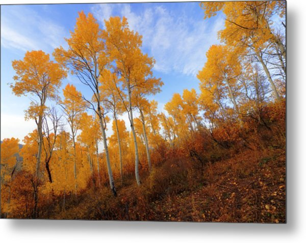 Shadowed Hill Metal Print