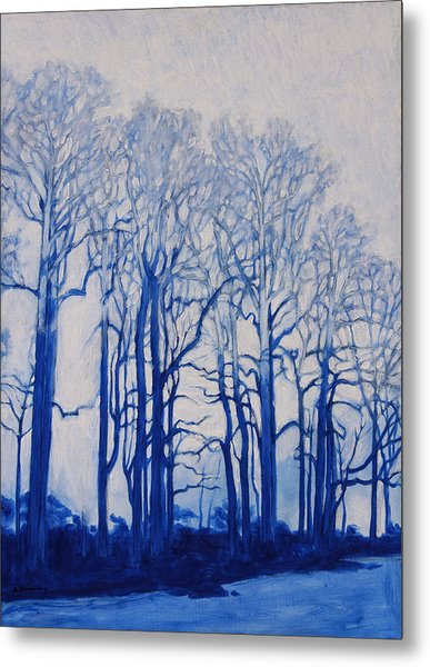 Shadows Of Winter Metal Print
