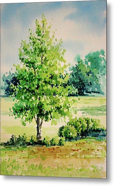 Shalom Park Watercolor Metal Print