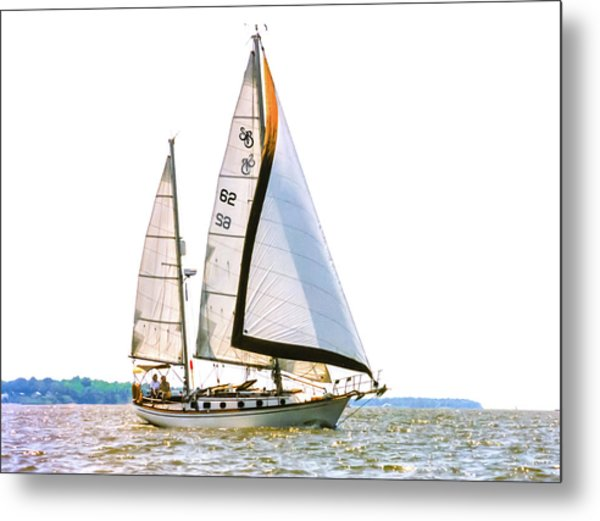 Shannon 38 Kittiwake On Chesapeake Bay Metal Print