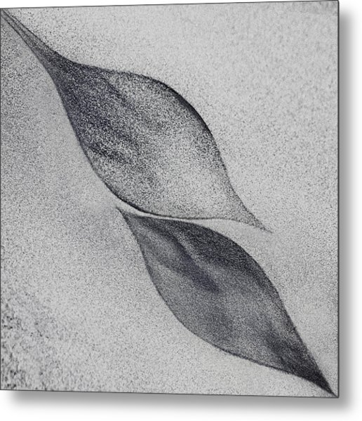Shaped By A Creative Wind Metal Print
