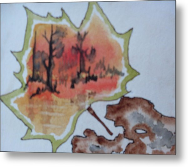 Shapes Of Nature Metal Print by Warren Thompson