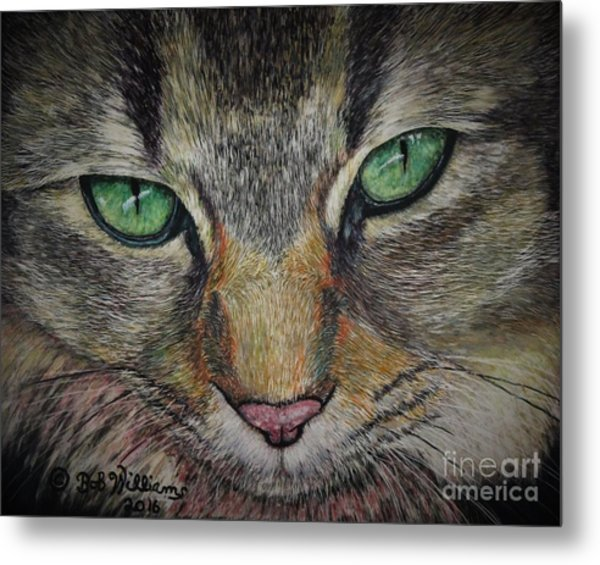 Sharna Eyes Metal Print