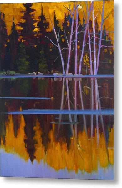 Shaw Lake Reflections Metal Print by Susan McCullough