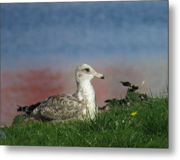She Who Watches Metal Print