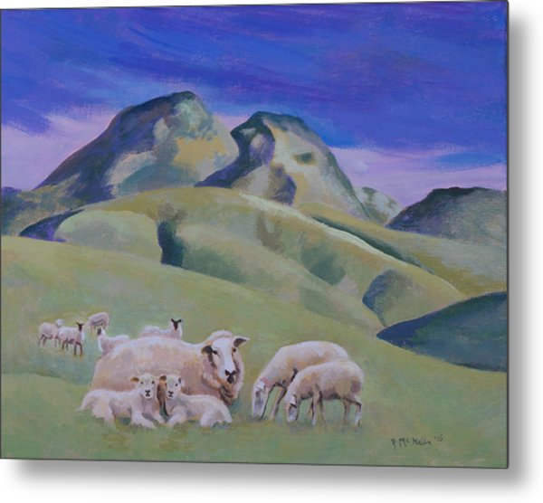 Sheep At Sutter Buttes Metal Print