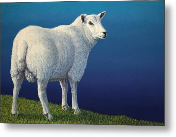 Sheep At The Edge Metal Print