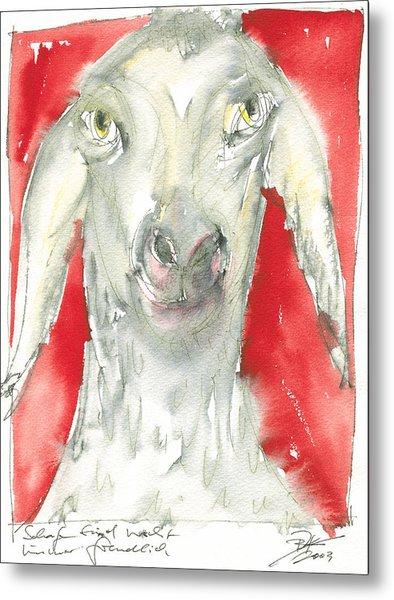 Sheeps Are Not Always Kind .... Metal Print by Joerg Bernhard Klemmer