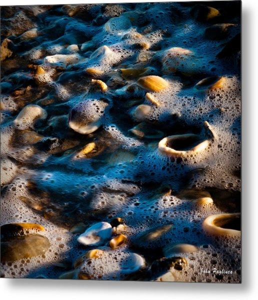 Shell Series No. 7 Metal Print