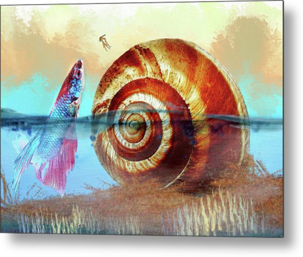 Shell Fish Metal Print
