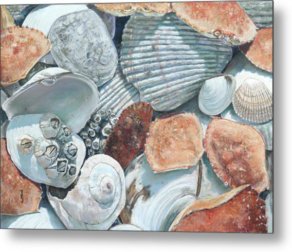 Shells Of The Puget Sound Metal Print