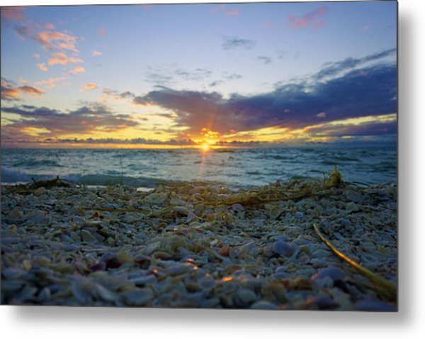 Shells On The Beach At Sunset Metal Print