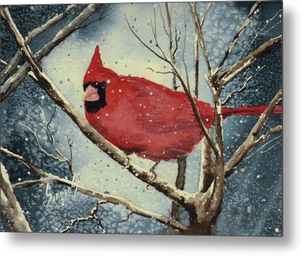 Shelly's Cardinal Metal Print
