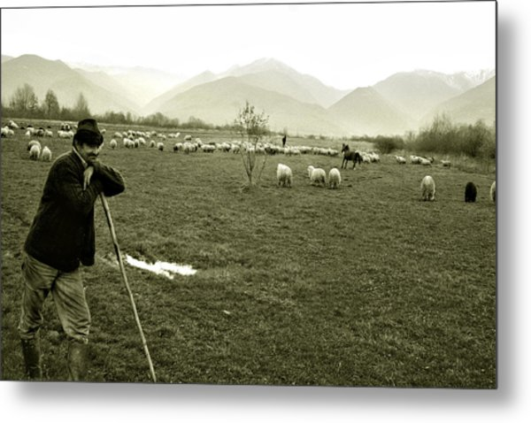Shepherd In The Carpathians Mountains Metal Print