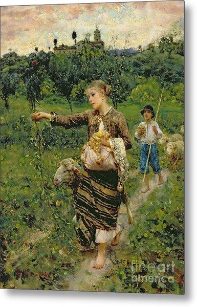 Shepherdess Carrying A Bunch Of Grapes Metal Print