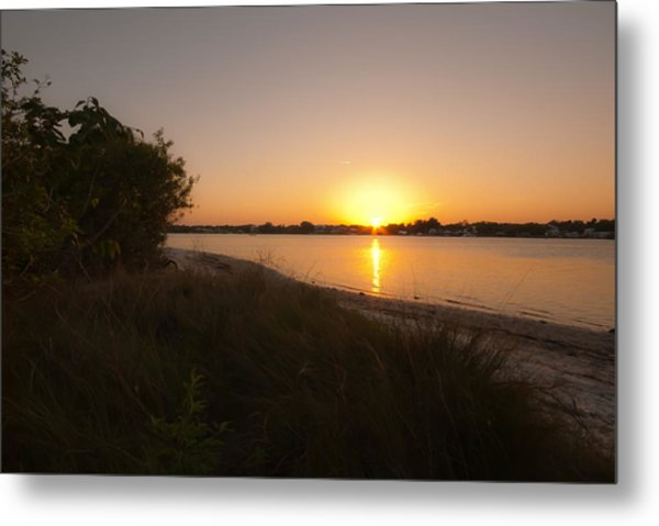 Shimmers Of Gold Metal Print by Laura DAddona