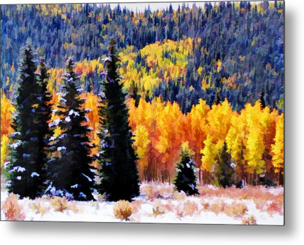 Shivering Pines In Autumn Metal Print