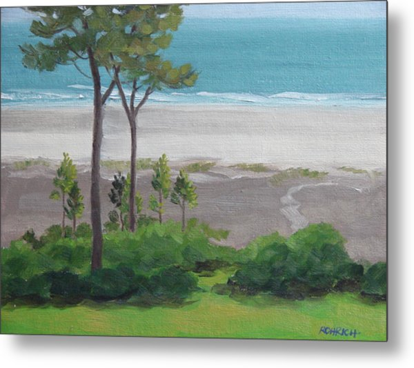 Shore Pines Metal Print by Robert Rohrich
