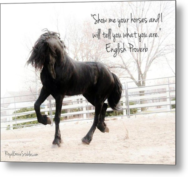 Show Me Your Horse Metal Print