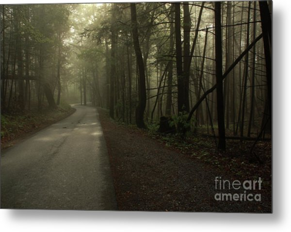 Shrouded Path Metal Print by J L  Gould