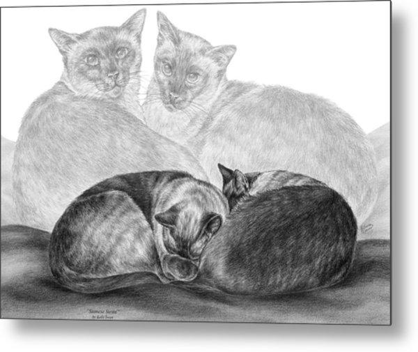 Siamese Cat Siesta Metal Print