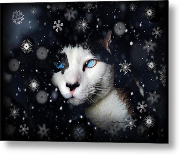 Siamese Cat Snowflakes Image   Metal Print