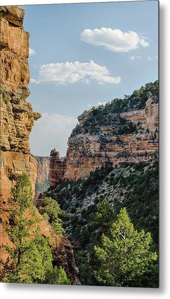 Side Canyon View Metal Print