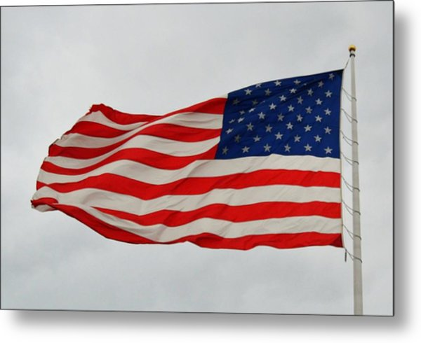 Sign Of Freedom Metal Print
