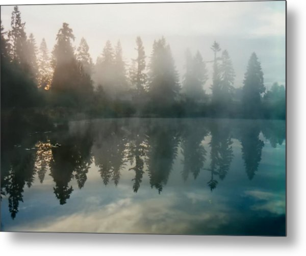 Silence Metal Print by Sergey and Svetlana Nassyrov