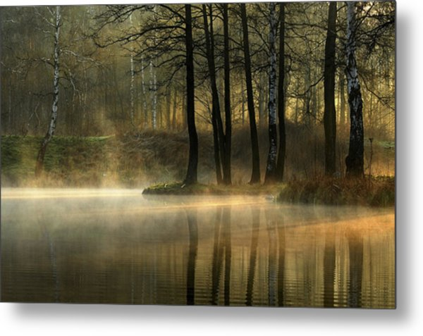 Silent Light. Metal Print