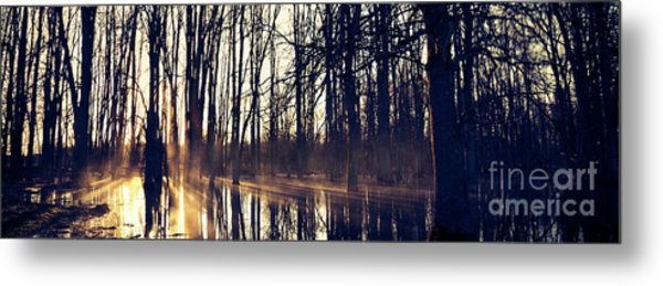 Silent Woods #4 Metal Print