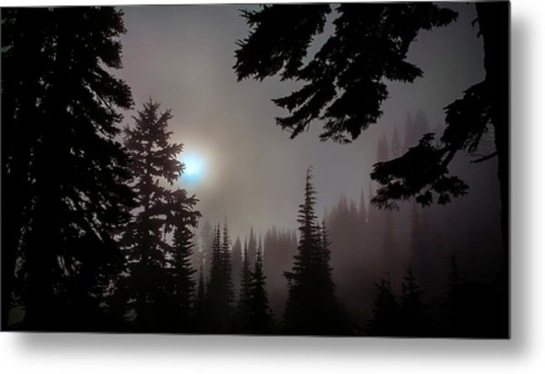 Silhouettes In The Mist 2008 Metal Print