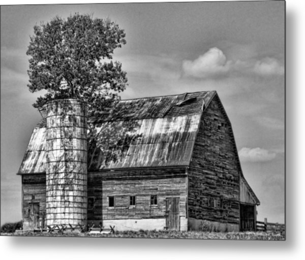 Silo Tree Black And White Metal Print