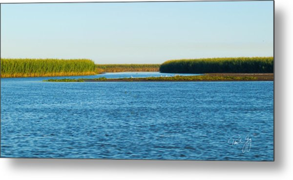 Silt Islands And Banks Mississippi River Delta Louisiana Metal Print