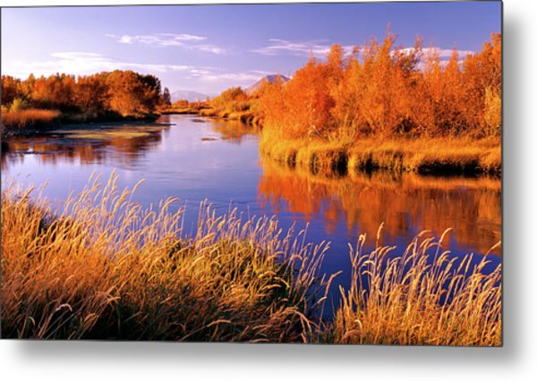Silver Creek Fly Fishing Only Metal Print