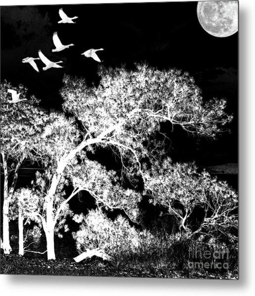 Silver Nights Metal Print