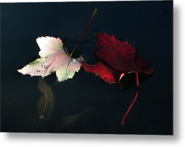 Silver Red And Black Metal Print