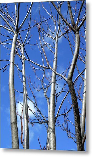 Silver Smooth Metal Print