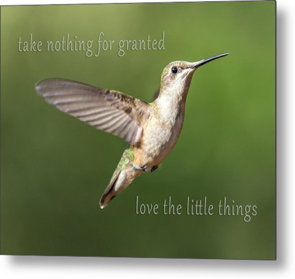 Simple Country Truths Hummingbird Metal Print