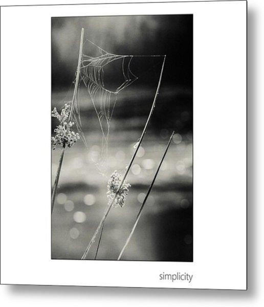 *simplicity Von Mandy Tabatt Auf Metal Print
