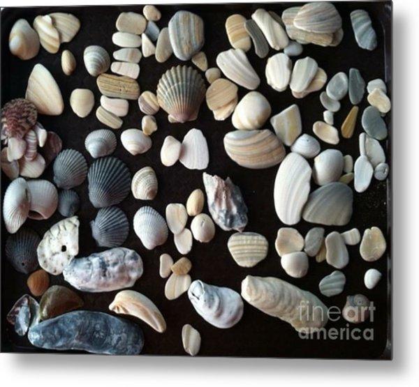 Simply Seashells Metal Print