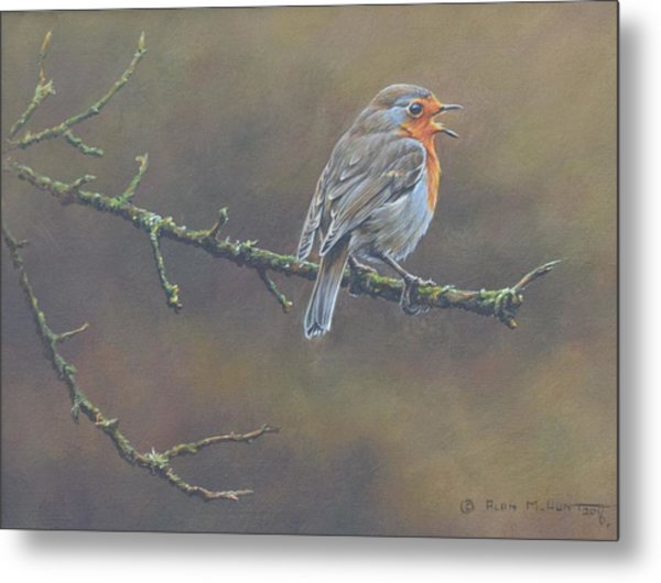 Metal Print featuring the painting Singing Robin by Alan M Hunt