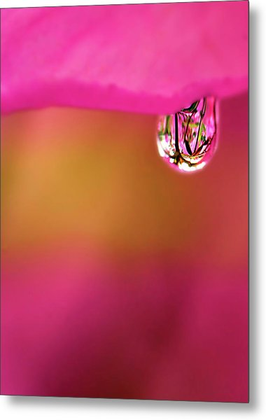 Single Drop Metal Print