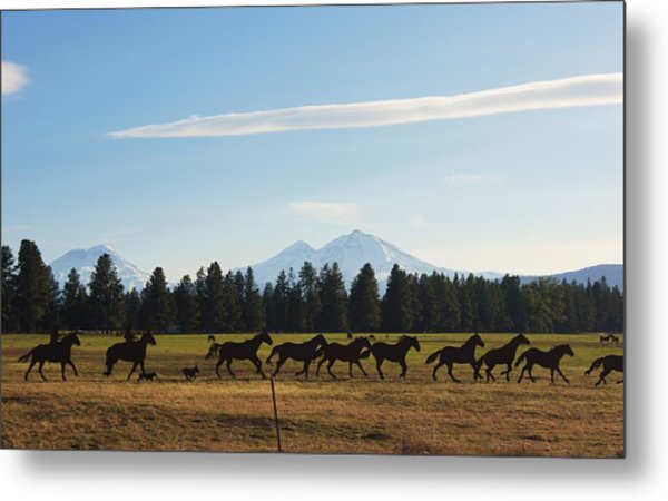 Sisters Oregon Metal Print