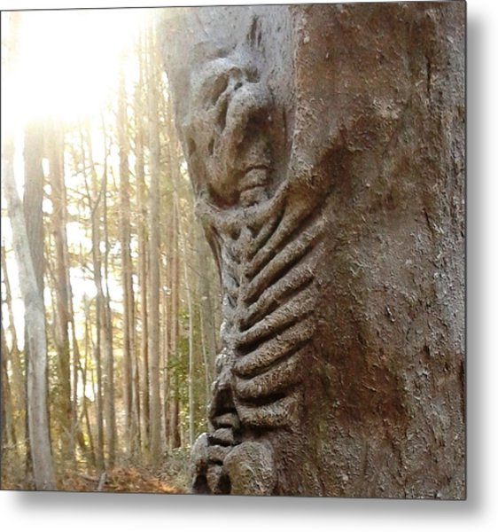 Skeleton Tree Metal Print