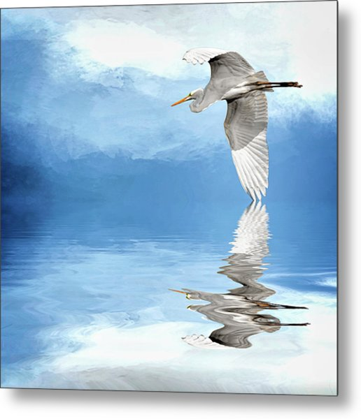 Skimming Metal Print